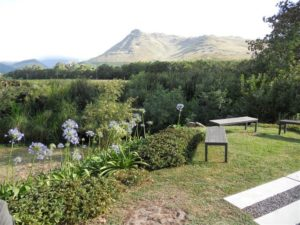 Franschoek_wedding_149