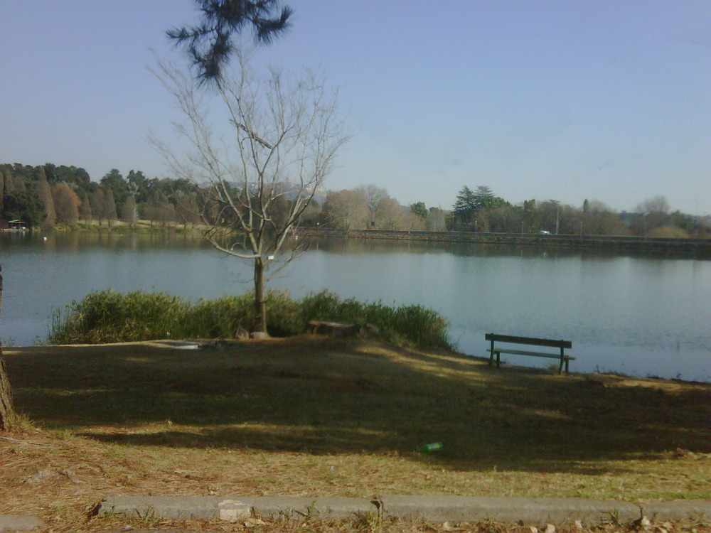 '@ the doc rooms next to this view of Emmarentia dam!
