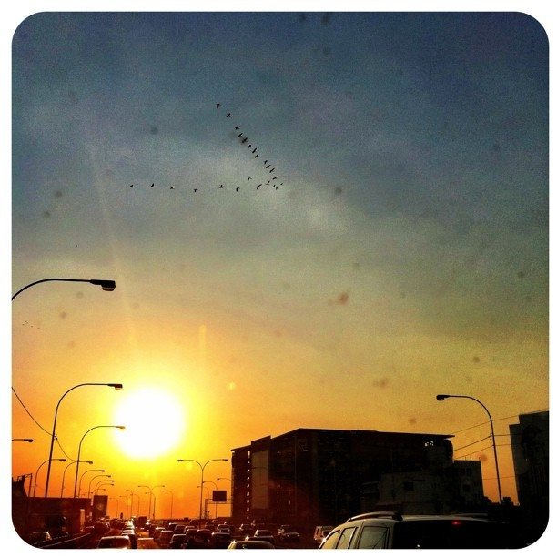 Just an iPhone, birds in the sky, traffic and a Joburg Sunset. #ilovejozi #city #sunset
