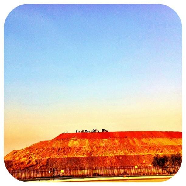 Horses on the mine dumps at dawn. #ilovejozi #sunrise